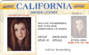WILLOW LICENSE